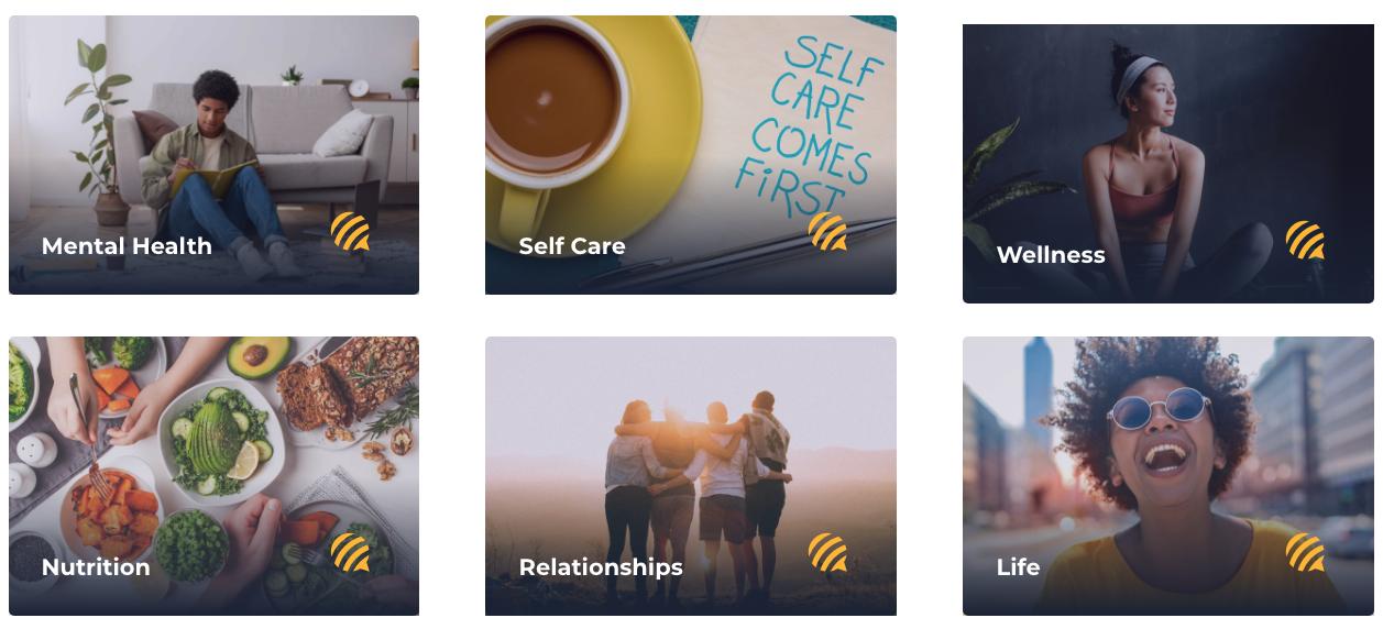 BEE University Mental Health Resources Categories